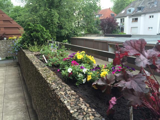 Balkonkasten 2
