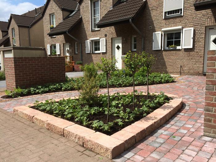 Bepflanzung Vorgarten, Beet Vorgarten