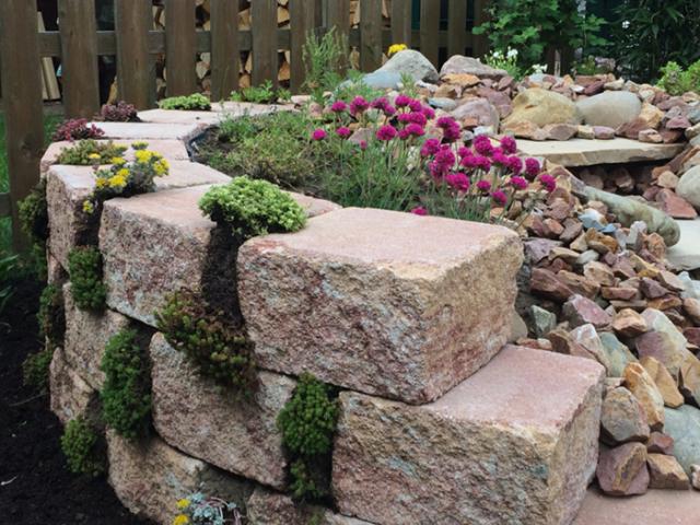 Fugenbepflanzung Mauersteine Beton