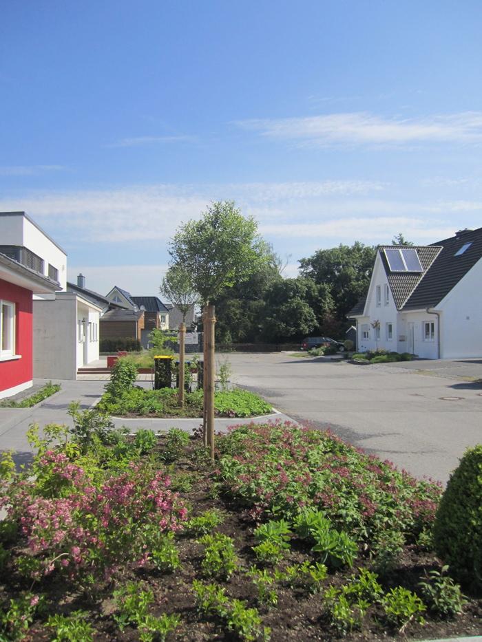 Neuanlage Vorgarten, Beet Vorgarten, Baum, Bodendecker