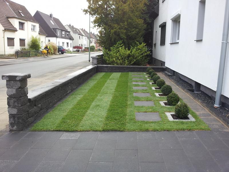 Vorgarten Bux und Rasen